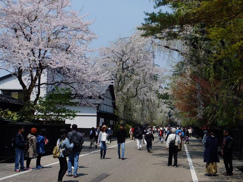 Top 3: Kakunodate Samurai Village