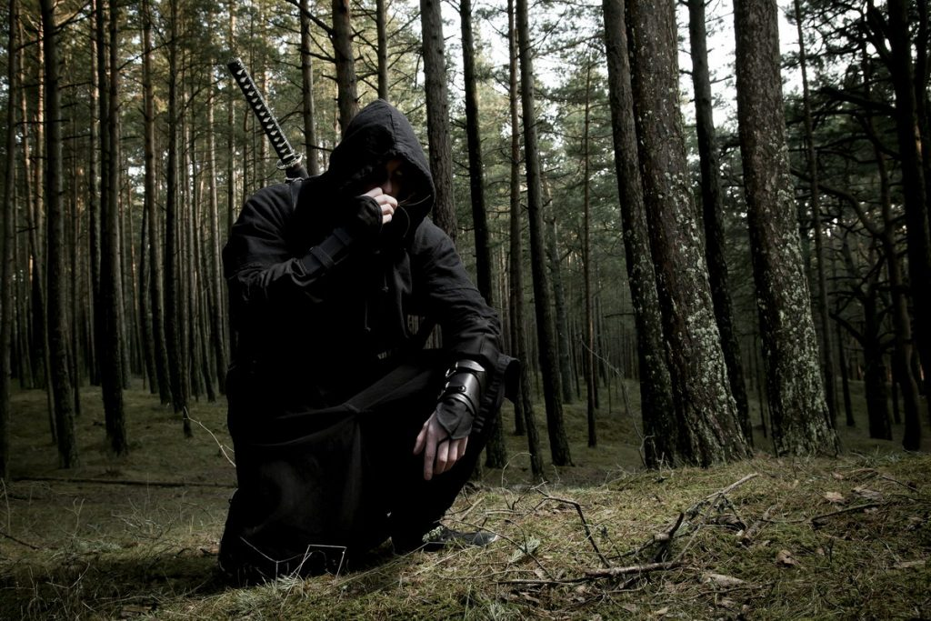 Warriors of Stealth - Japan's Most Famous Shinobi during the Feudal Period